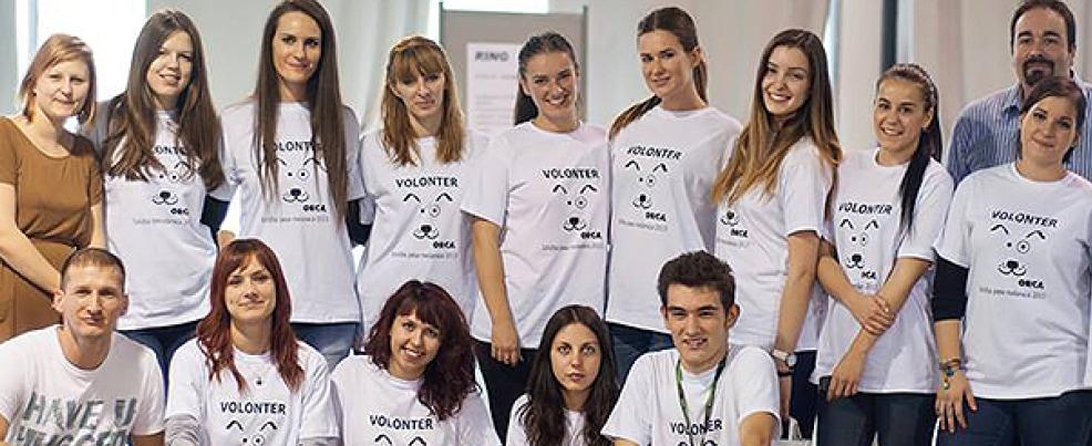 Orca volonteri