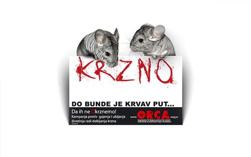 Srbija je zabranila ubijanje životinja radi proizvodnje krzna!