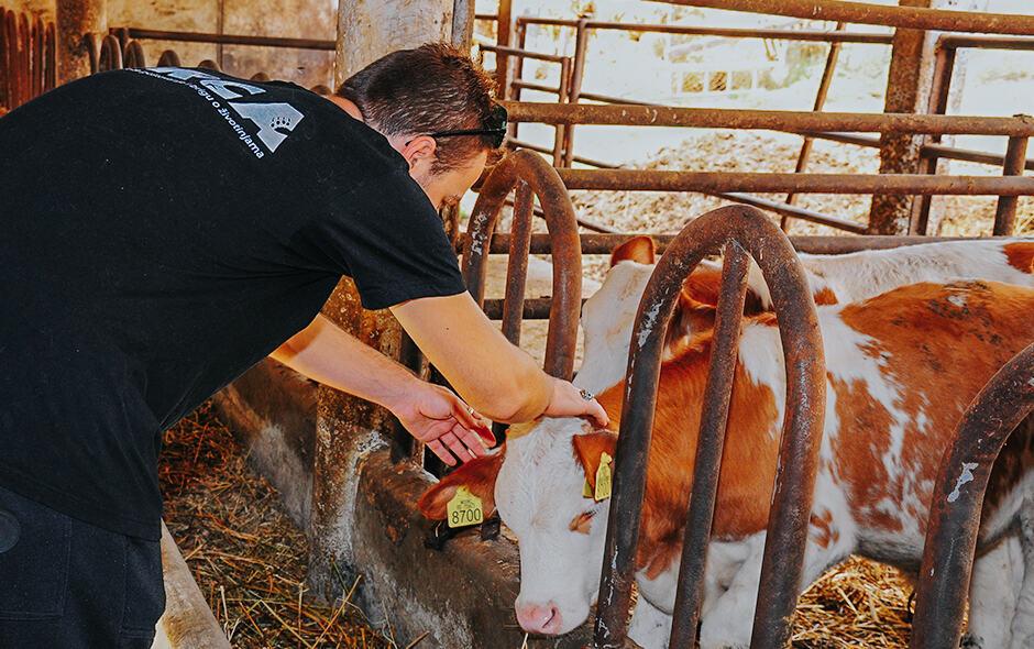 """Projekat """"Standardi dobrobiti životinja"""""""