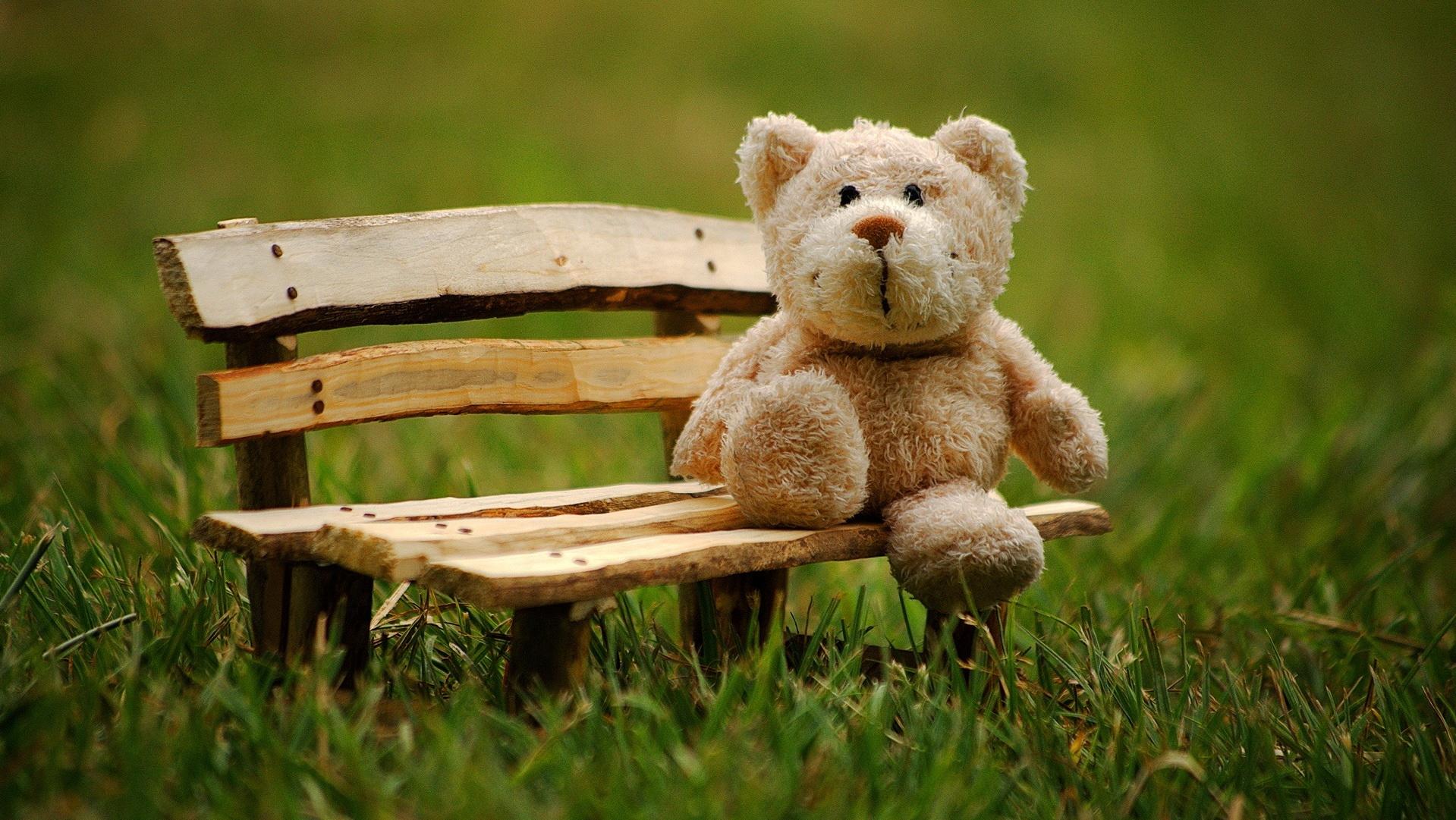 Plišani meda sedi na drvenoj klupi u parku