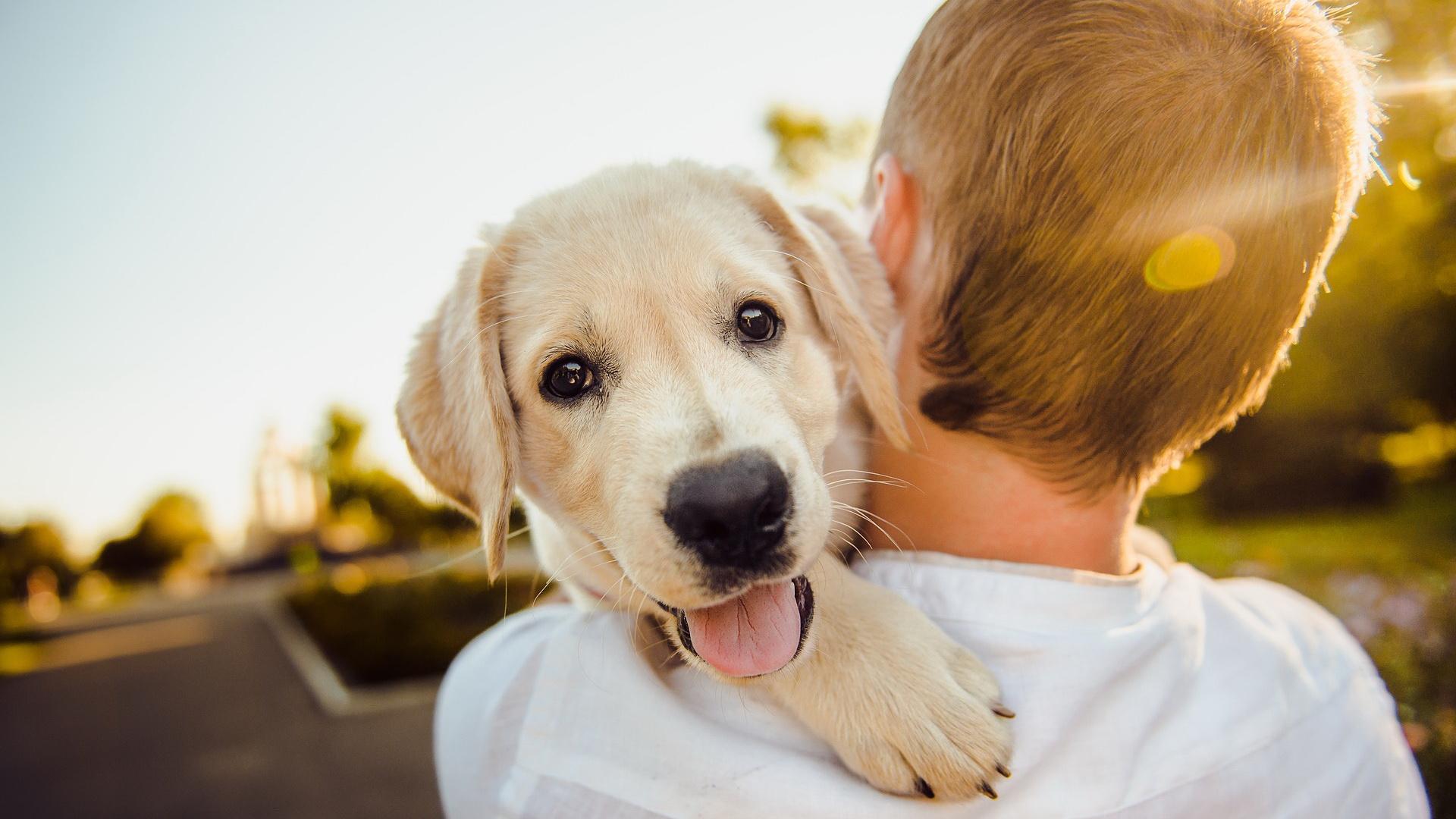 Čovek grli srećnog psa