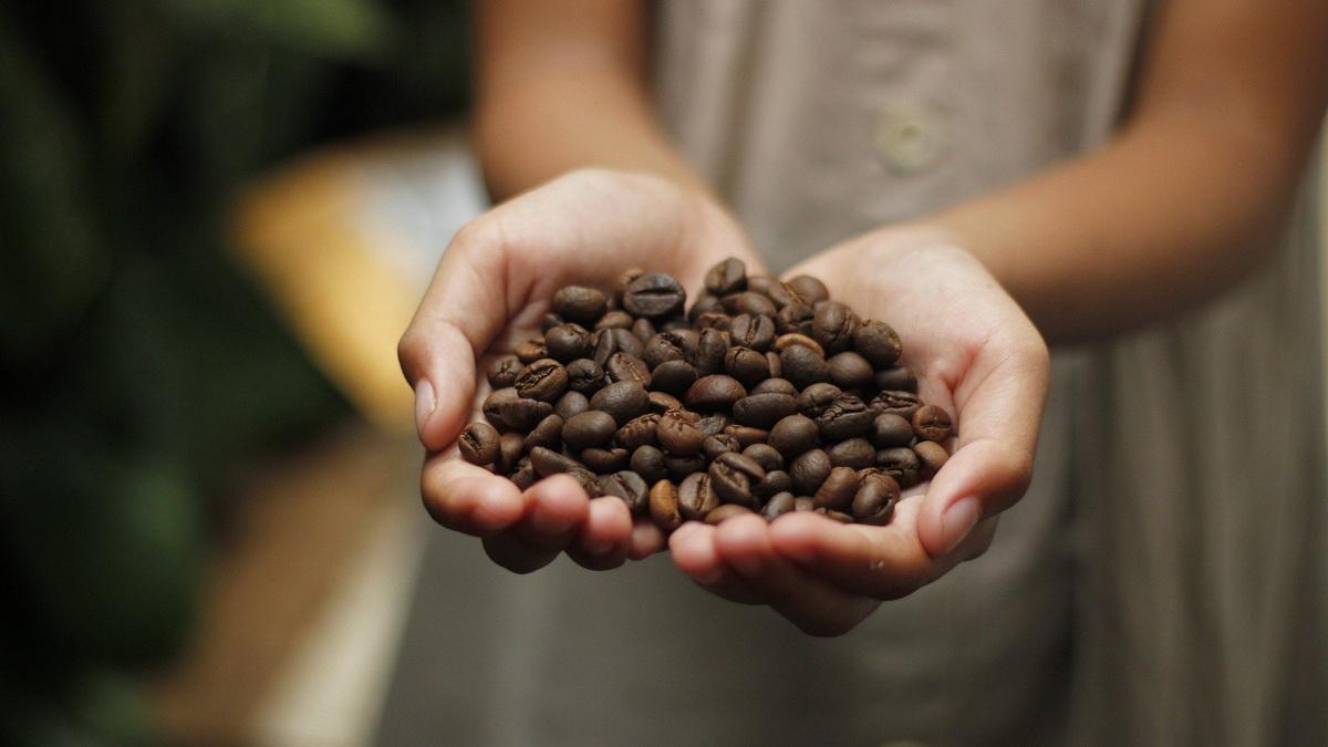 Devojka drži zrno kafe na dlanu