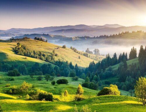Aktivni građani: znanjem do zaštićene prirode i životinja