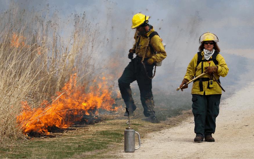 Paljenje strnjike izaziva požare